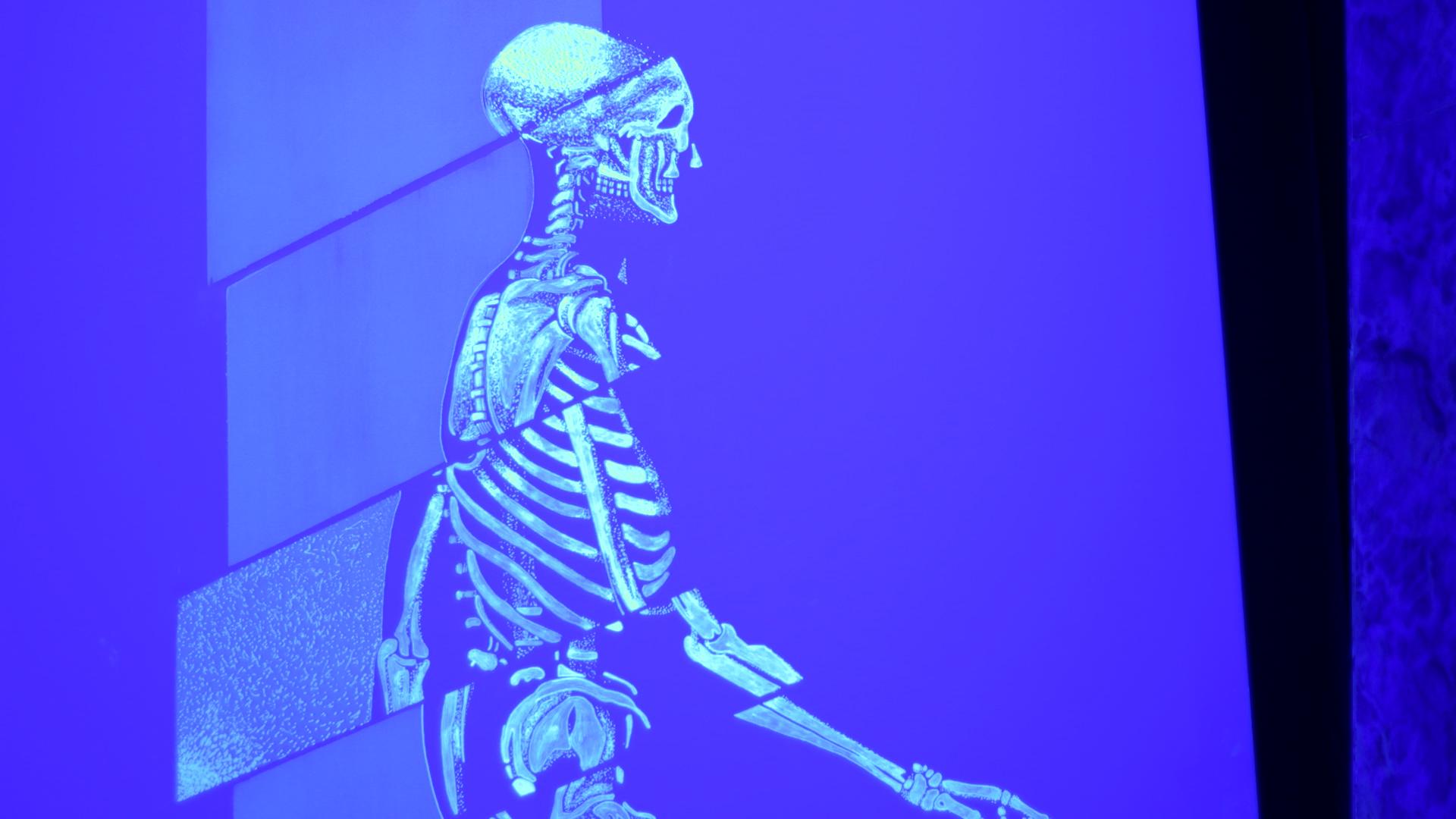 2.-esqueleto-1