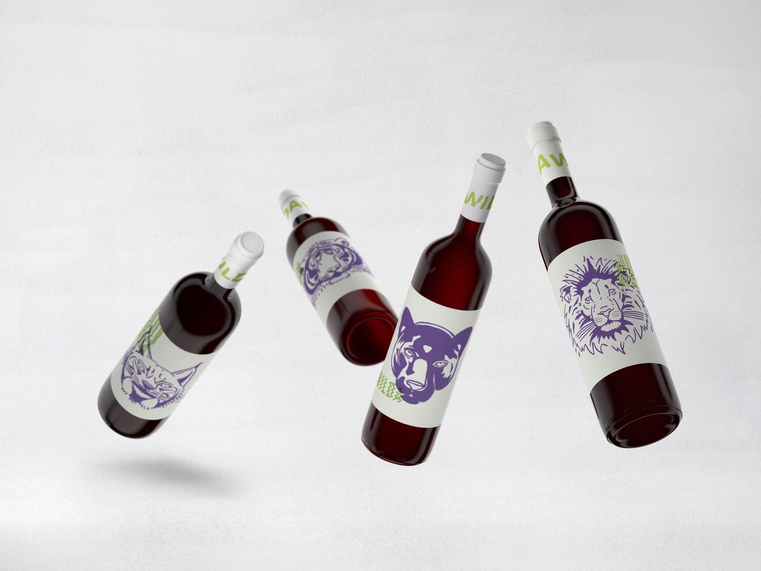 Wilda-Angel-Espinosa-Botellas-2